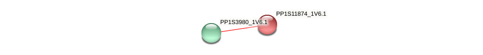 PP1S11874_1V6.1 protein (Physcomitrella patens) - STRING interaction network