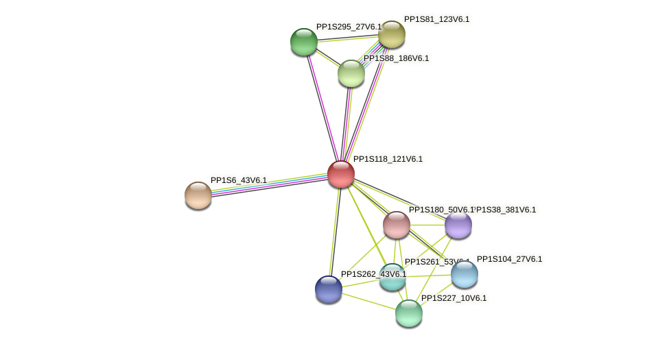 PP1S118_121V6.1 protein (Physcomitrella patens) - STRING interaction network