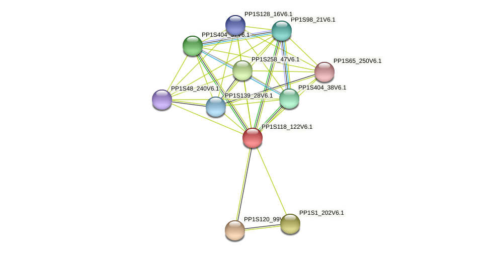 PP1S118_122V6.1 protein (Physcomitrella patens) - STRING interaction network
