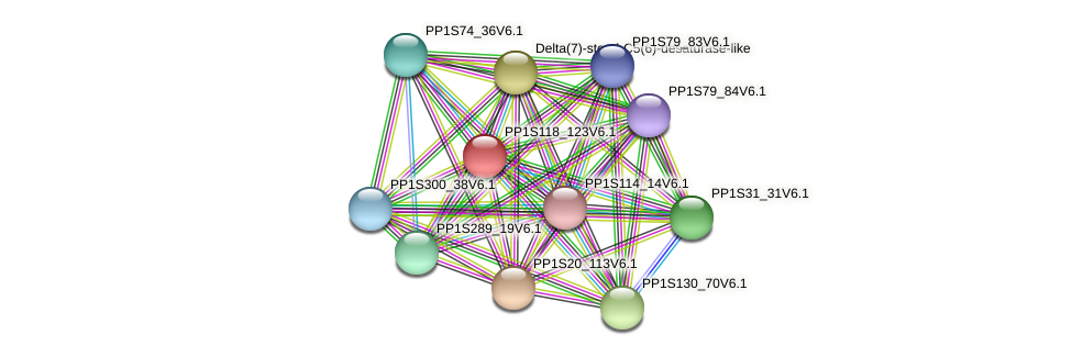 PP1S118_123V6.1 protein (Physcomitrella patens) - STRING interaction network