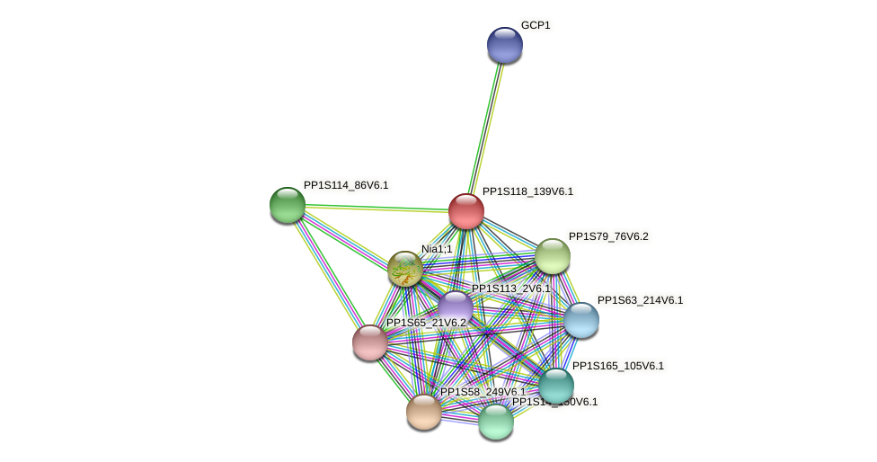 PP1S118_139V6.1 protein (Physcomitrella patens) - STRING interaction network