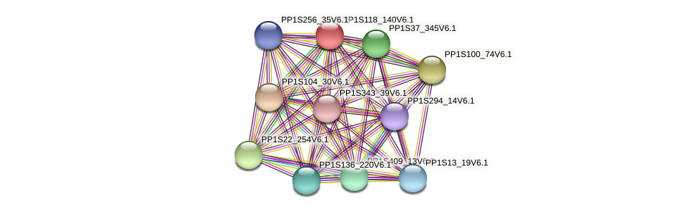 PP1S118_140V6.1 protein (Physcomitrella patens) - STRING interaction network