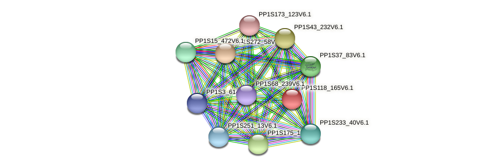 PP1S118_165V6.1 protein (Physcomitrella patens) - STRING interaction network