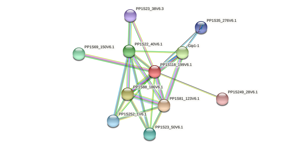PP1S118_199V6.1 protein (Physcomitrella patens) - STRING interaction network