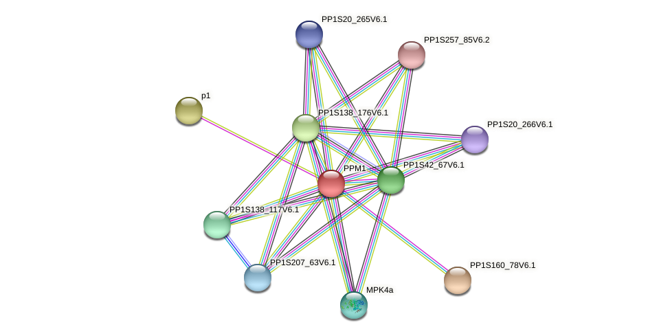 PPM1 protein (Physcomitrella patens) - STRING interaction network