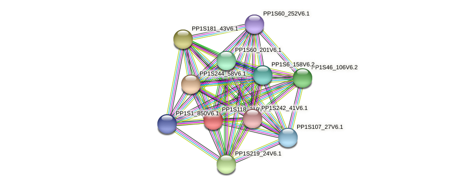 PP1S118_219V6.1 protein (Physcomitrella patens) - STRING interaction network
