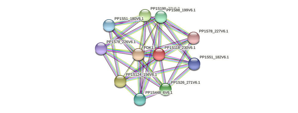PP1S118_230V6.1 protein (Physcomitrella patens) - STRING interaction network