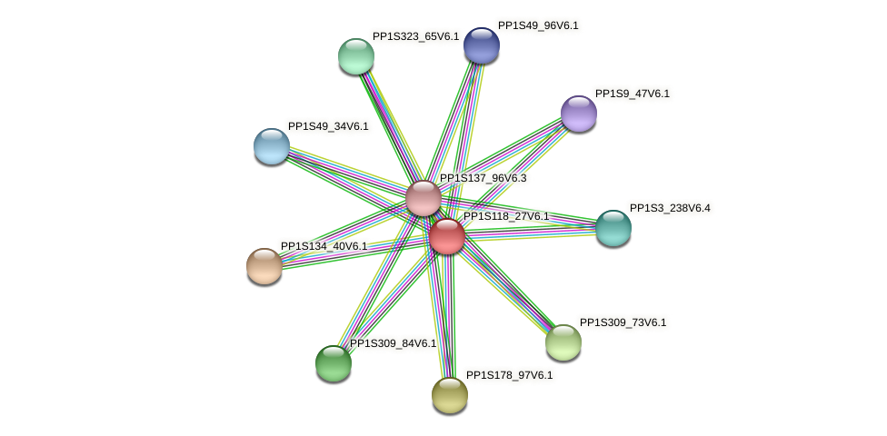 PP1S118_27V6.1 protein (Physcomitrella patens) - STRING interaction network