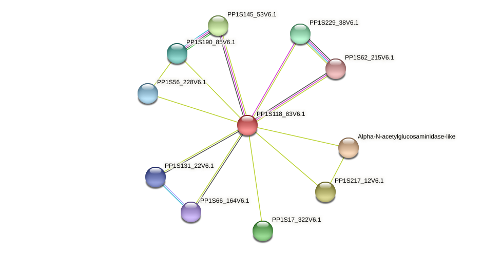 PP1S118_83V6.1 protein (Physcomitrella patens) - STRING interaction network