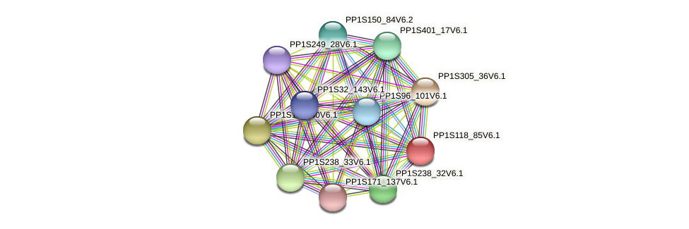 PP1S118_85V6.1 protein (Physcomitrella patens) - STRING interaction network