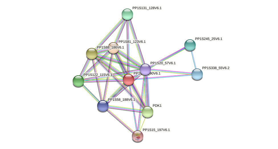 PP1S118_90V6.1 protein (Physcomitrella patens) - STRING interaction network