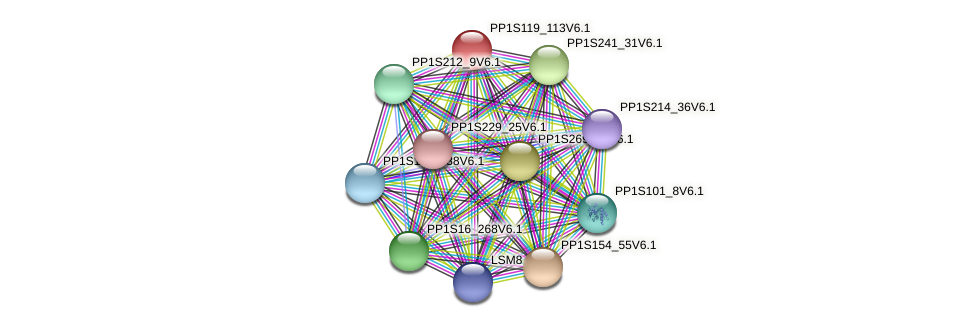 PP1S119_113V6.1 protein (Physcomitrella patens) - STRING interaction network