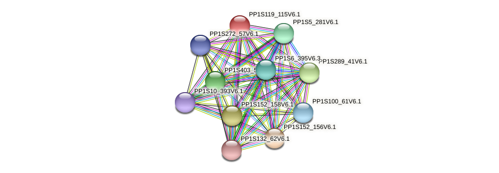 PP1S119_115V6.1 protein (Physcomitrella patens) - STRING interaction network