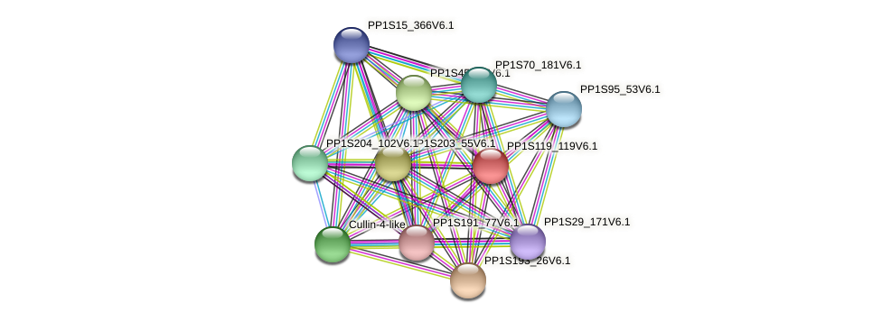 PP1S119_119V6.1 protein (Physcomitrella patens) - STRING interaction network