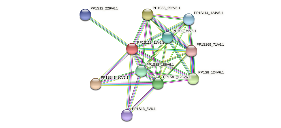 PP1S119_11V6.1 protein (Physcomitrella patens) - STRING interaction network