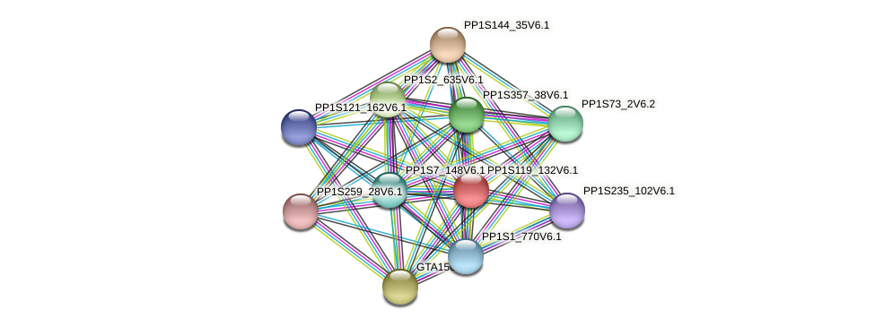 PP1S119_132V6.1 protein (Physcomitrella patens) - STRING interaction network