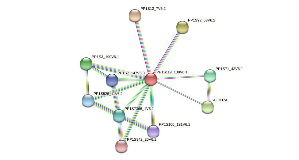 PP1S119_138V6.1 protein (Physcomitrella patens) - STRING interaction network