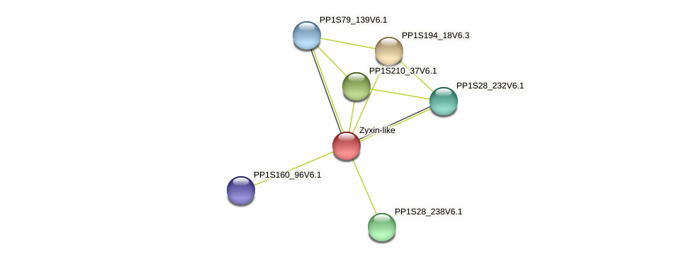 PP1S119_48V6.1 protein (Physcomitrella patens) - STRING interaction network