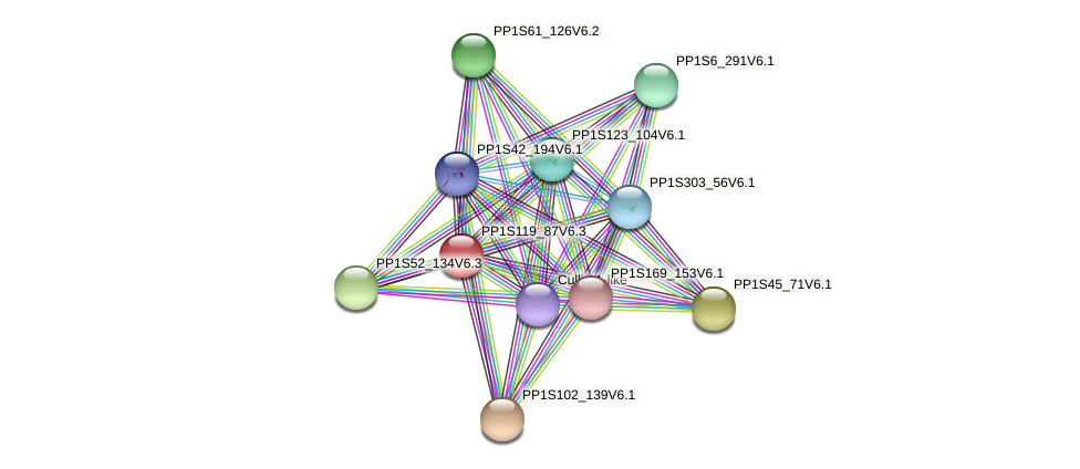 PP1S119_87V6.3 protein (Physcomitrella patens) - STRING interaction network