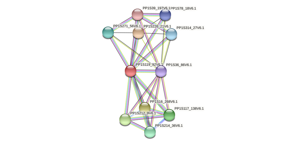 PP1S119_92V6.1 protein (Physcomitrella patens) - STRING interaction network