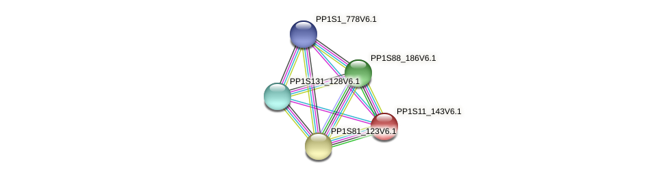 PP1S11_143V6.1 protein (Physcomitrella patens) - STRING interaction network