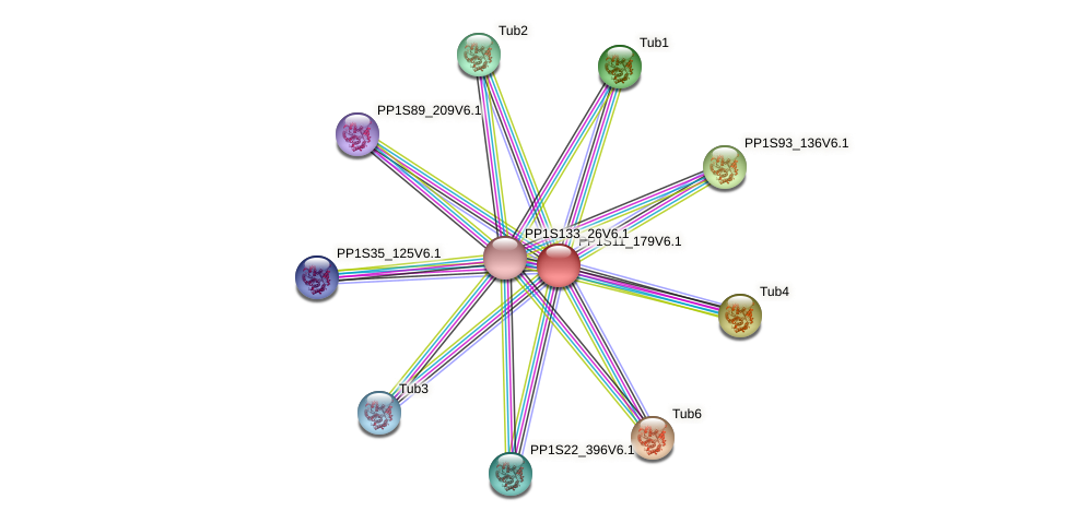 PP1S11_179V6.1 protein (Physcomitrella patens) - STRING interaction network