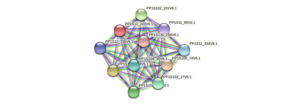 PP1S11_243V6.1 protein (Physcomitrella patens) - STRING interaction network