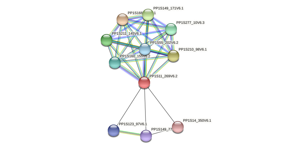 PP1S11_269V6.2 protein (Physcomitrella patens) - STRING interaction network