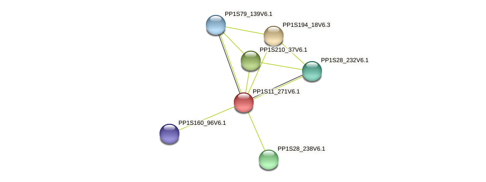 PP1S11_271V6.1 protein (Physcomitrella patens) - STRING interaction network