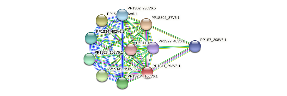 PP1S11_293V6.1 protein (Physcomitrella patens) - STRING interaction network