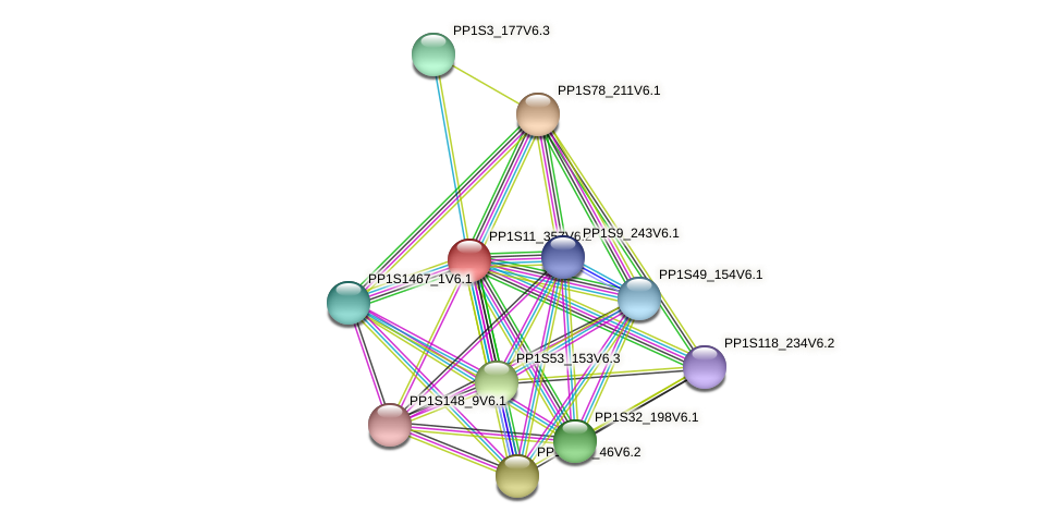 PP1S11_357V6.2 protein (Physcomitrella patens) - STRING interaction network