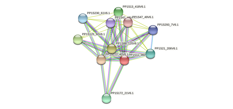 PP1S11_360V6.1 protein (Physcomitrella patens) - STRING interaction network