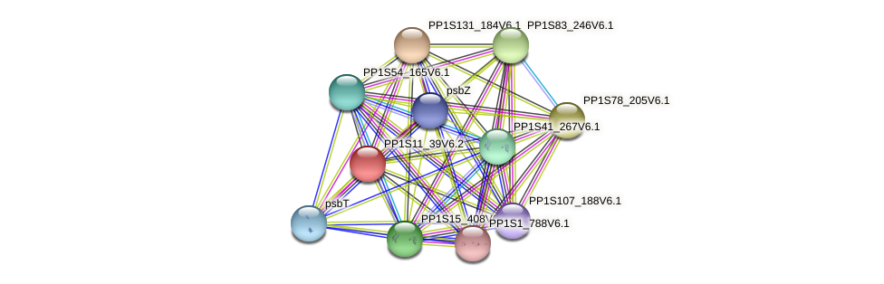 PP1S11_39V6.2 protein (Physcomitrella patens) - STRING interaction network