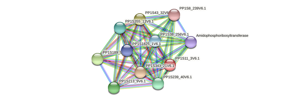 PP1S11_3V6.1 protein (Physcomitrella patens) - STRING interaction network