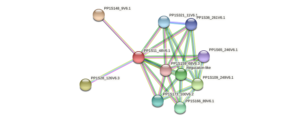 PP1S11_48V6.1 protein (Physcomitrella patens) - STRING interaction network