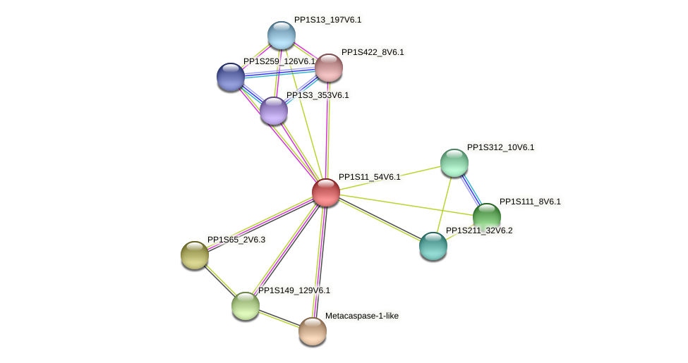 PP1S11_54V6.1 protein (Physcomitrella patens) - STRING interaction network