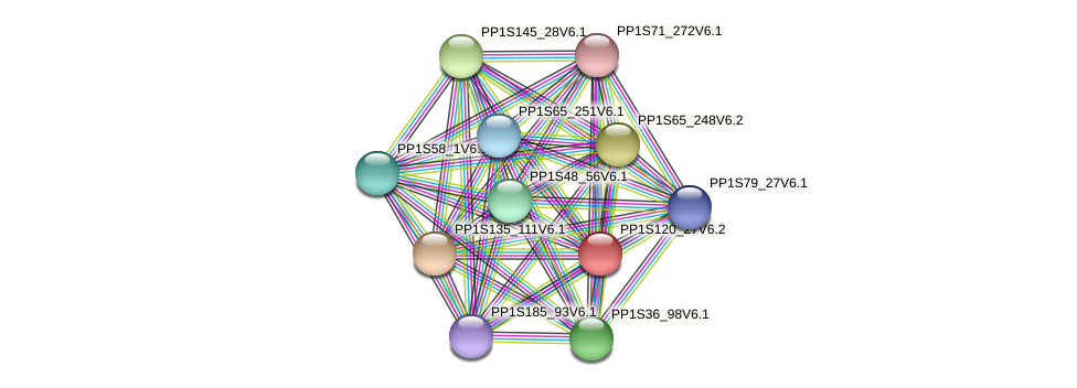 PP1S120_27V6.2 protein (Physcomitrella patens) - STRING interaction network