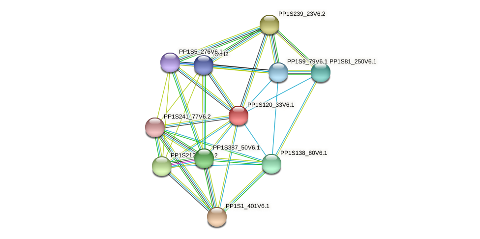 PP1S120_33V6.1 protein (Physcomitrella patens) - STRING interaction network