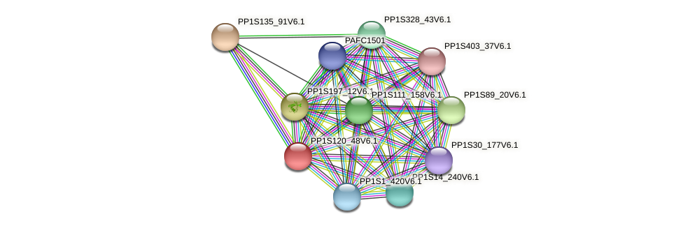 PP1S120_48V6.1 protein (Physcomitrella patens) - STRING interaction network