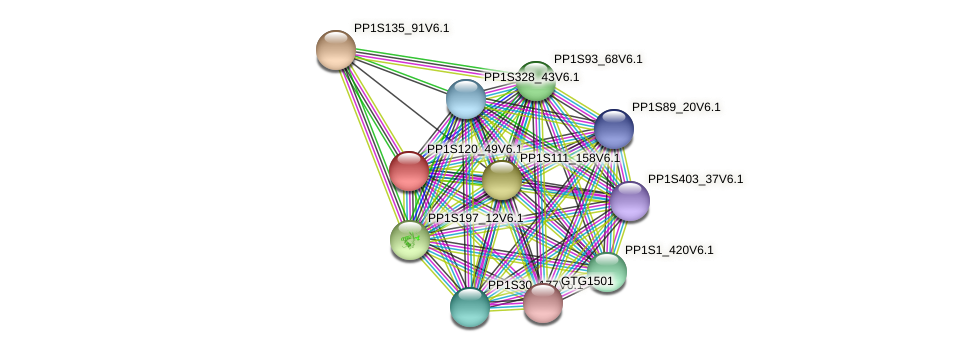 PP1S120_49V6.1 protein (Physcomitrella patens) - STRING interaction network