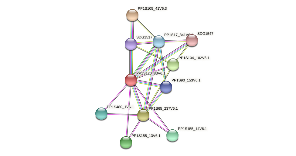 PP1S120_83V6.1 protein (Physcomitrella patens) - STRING interaction network