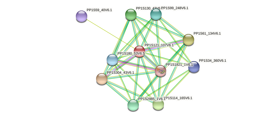 PP1S121_107V6.1 protein (Physcomitrella patens) - STRING interaction network