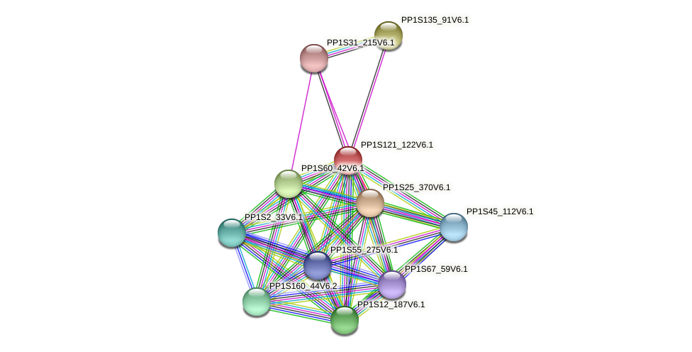 PP1S121_122V6.1 protein (Physcomitrella patens) - STRING interaction network