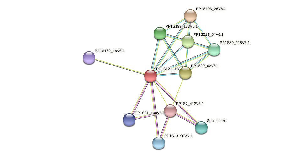 PP1S121_158V6.1 protein (Physcomitrella patens) - STRING interaction network