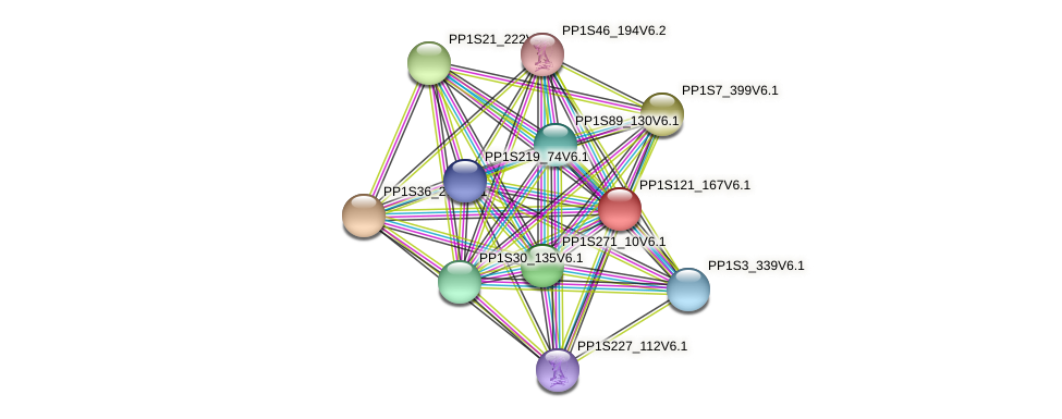 PP1S121_167V6.1 protein (Physcomitrella patens) - STRING interaction network