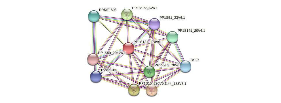 PP1S121_170V6.1 protein (Physcomitrella patens) - STRING interaction network