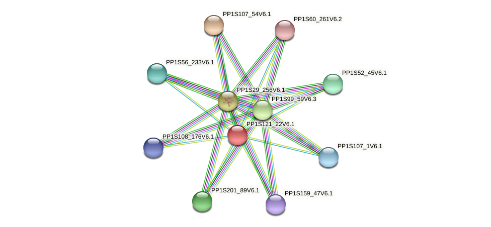 PP1S121_22V6.1 protein (Physcomitrella patens) - STRING interaction network