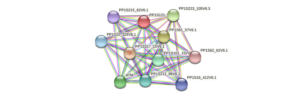 PP1S121_28V6.2 protein (Physcomitrella patens) - STRING interaction network
