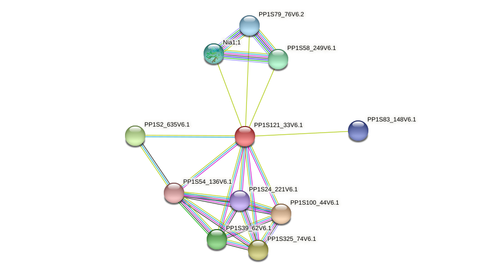 PP1S121_33V6.1 protein (Physcomitrella patens) - STRING interaction network