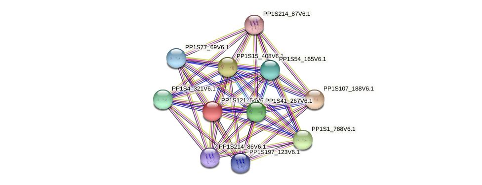 PP1S121_54V6.1 protein (Physcomitrella patens) - STRING interaction network